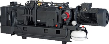 S-VSI 301 Screw Vacuum Pump from Elmo Rietschle