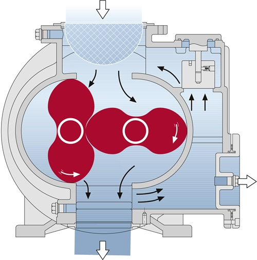 Rotary lobe pump cut section diagram