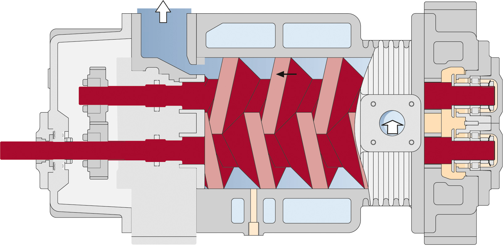 Screw vacuum pump operating principles cut section model