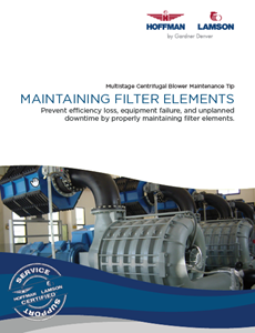 Hoffman & Lamson Maintaining Filter Elements