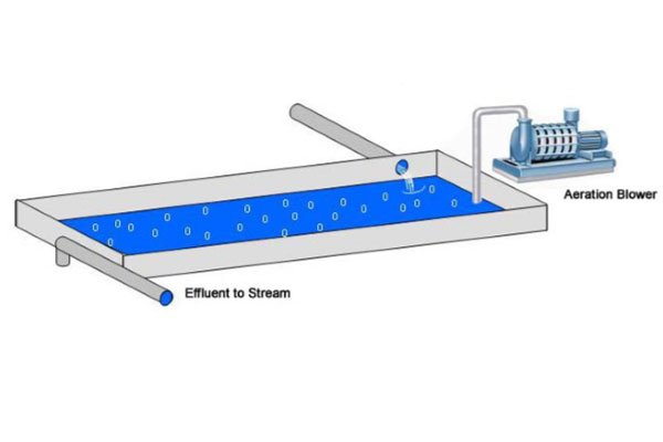 Aeration in Wastewater Treatment