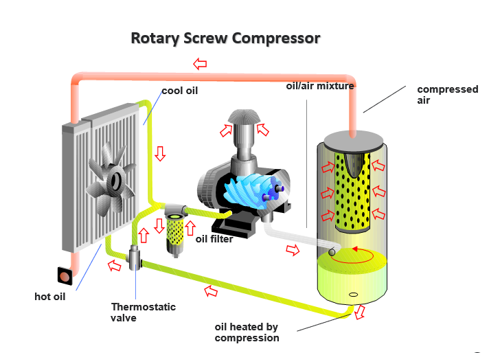 rotary screw compressor oil cooling and separation