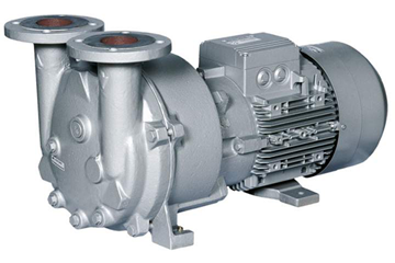 2BV5 Monoblock Liquid Ring Vacuum Pump	4 to 600 m3/h (2 to 353 CFM)